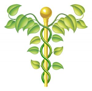 Natural caduceus concept can be used for natural or alternative medicine etc.