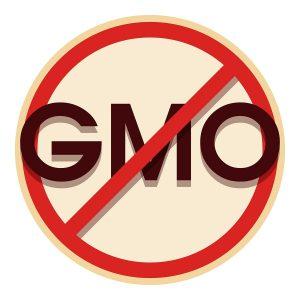 No gmo icon. Cartoon illustration of no gmo icon for web