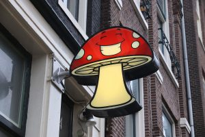 AMSTERDAM, NETHERLANDS - DECEMBER 6, 2018: Magic mushrooms store in Amsterdam. Netherlands is known for its relaxed laws towards recreational use of drugs like psychodelic mushrooms.
