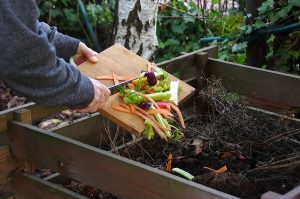 Ecology compost supply - kitchen waste recycling in backyard composter. The man throws leftover vegetables from the cutting board. Environmentally friendly lifestyle.